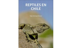 amphibians & reptiles of central & south america