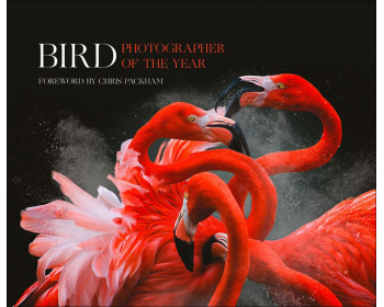 bird photographer of the year. collection 3