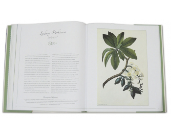 Botanical Art From Renaissance Herbaria To The 19th Century