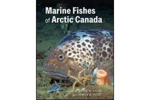 fishes of north america