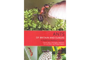 invertebrates of europe, north africa & middle east
