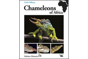 amphibians & reptiles of africa