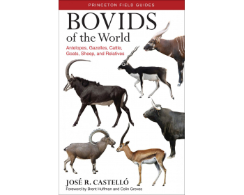 bovids of the world. antelopes, gazelles, cattle, goats, sheep and relatives